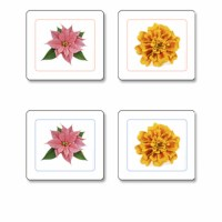 Flowers Matching Cards