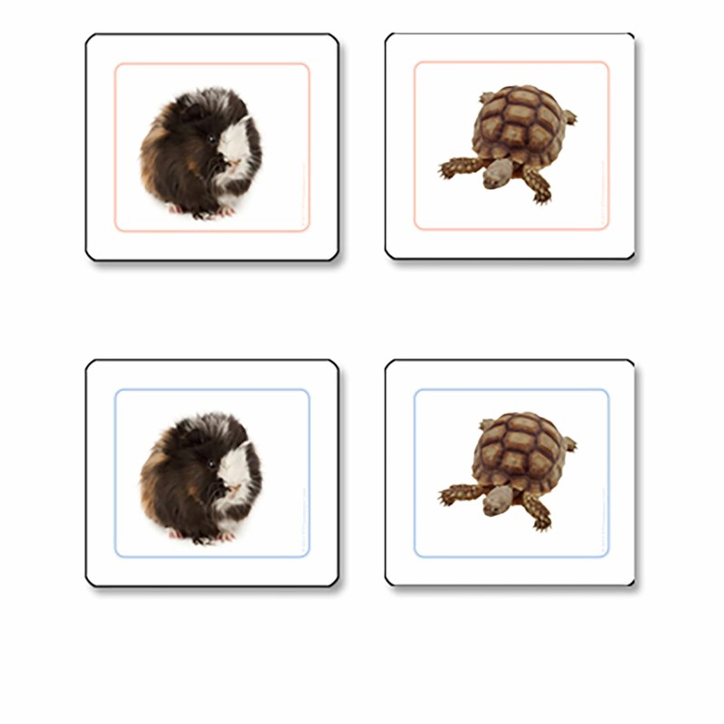 Pets Matching Cards