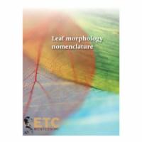 Leaf Morphology Nomenclature