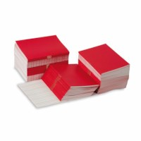 Writing Booklets: Red – Small (100)