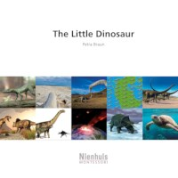 The Little Dinosaur