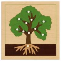 Botany Puzzle: Tree