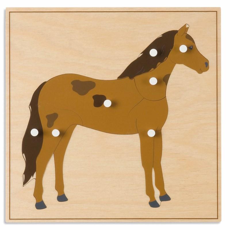 Animal Puzzle: Horse