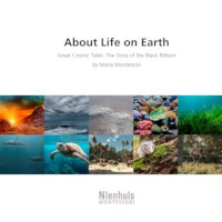 About Life On Earth