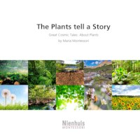 The Plants Tell A Story
