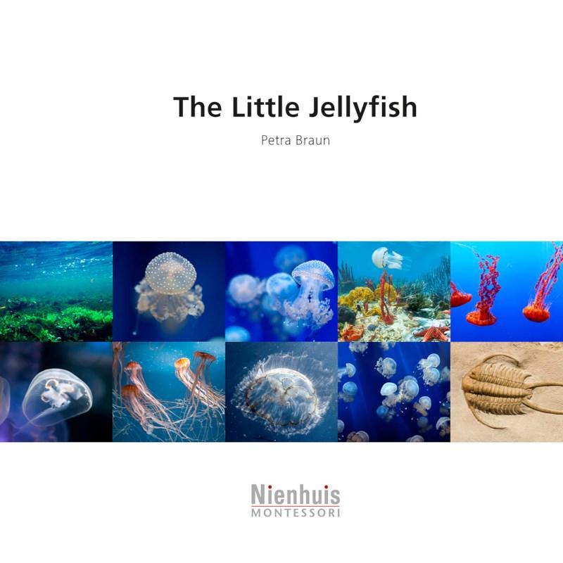 The Little Jellyfish