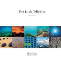 The Little Trilobite