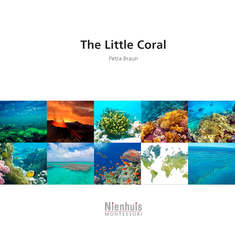 The Little Coral